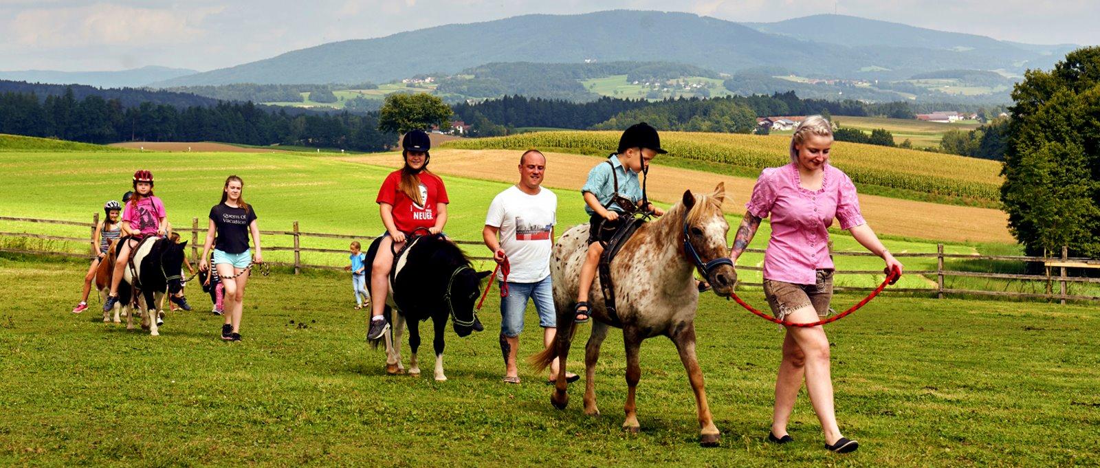 eder-kinderreiterferien-bayerischer-wald-ponyreiten-panorama-1600