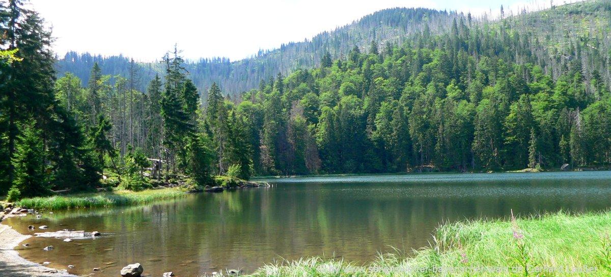 nationalpark-bayerischer-wald-wanderungen-rachelsee